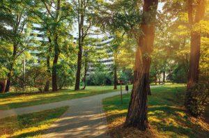 Osiedle Piasta Park 2
