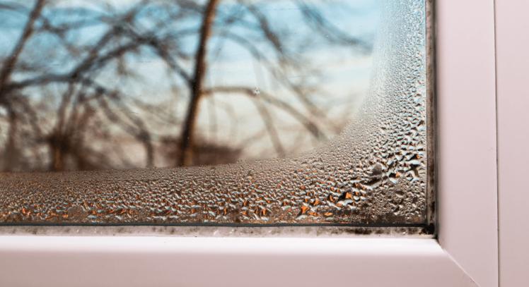parowanie okien