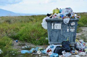 ile kosztuje wywóz śmieci